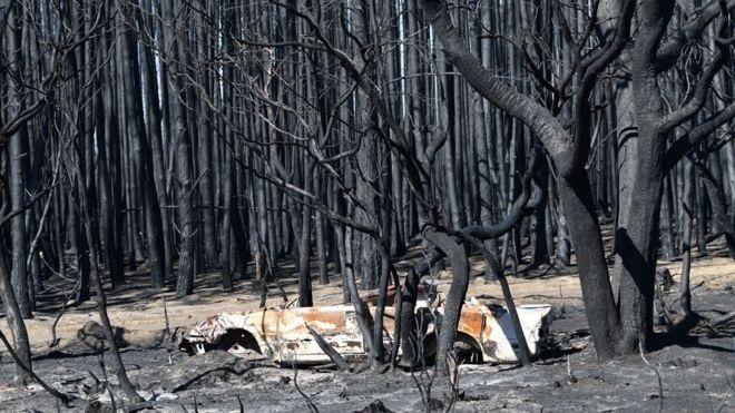 australia fire bbc